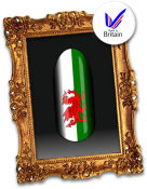 Design Your Own - Welsh Flag
